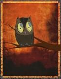 Entertaining Duperb Owl (Endangered)