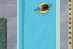 Pool Series - Play #12